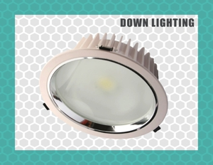 Down Lighting applications vary significantly from general industrial, commercial lighting to decorative and Architectural lighting. The choice of fitting depends mainly on the client requirements in terms of application.