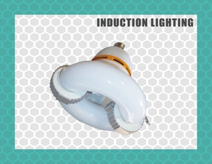 Induction lighting, specifically High Bays, are typically used in places such as warehouses, factories, showrooms, large retail stores, steel mills, plants, sports facilities, workshops etc. The choice of fitting depends mainly on the client requirements in terms of application.